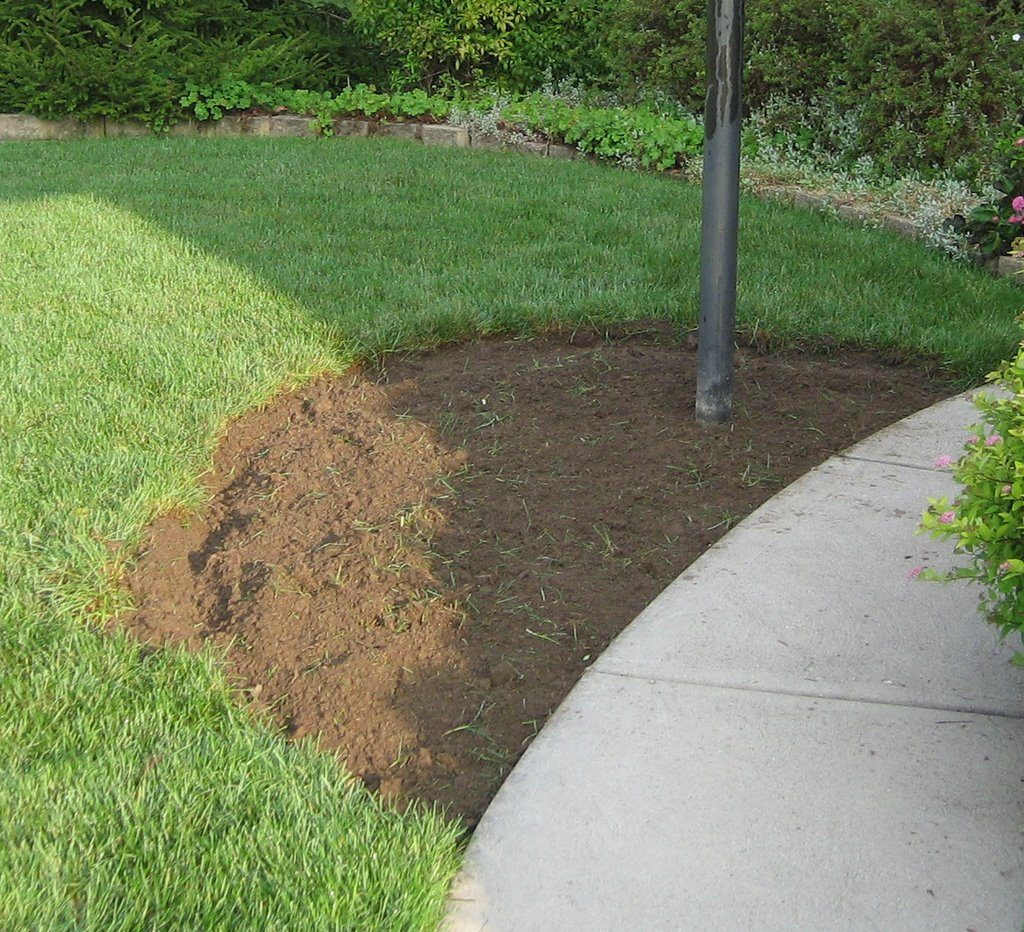 How To Dig Up A Flower Bed Growerexperts Com