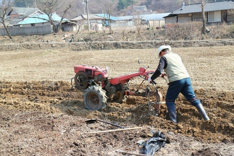 large rear tine tiller being used by a man in a hat walking behind in hard dry soil