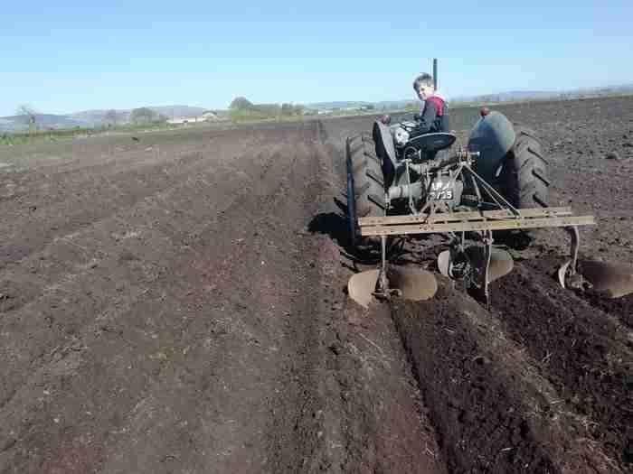 ferguson tractor drilling in peat soil