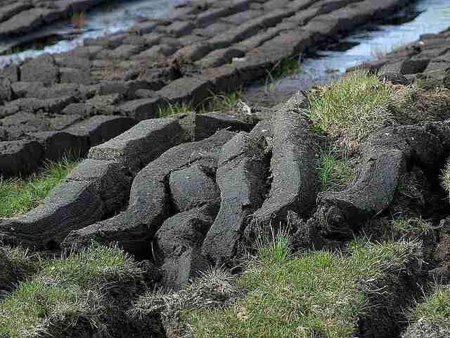 peat moss cut on moss bank