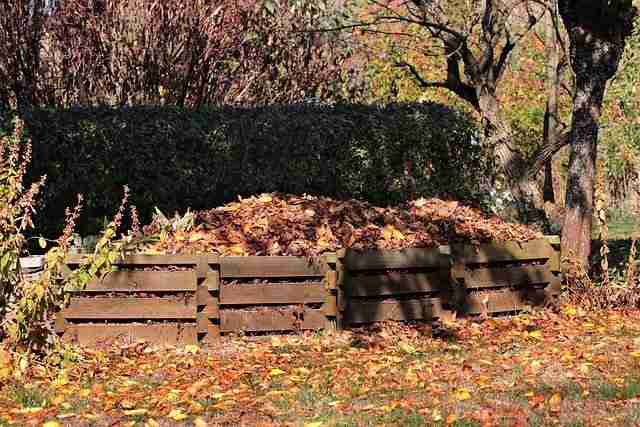 leaf compost in wooden composter boxes