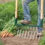 a broadfork in a vegetable garden