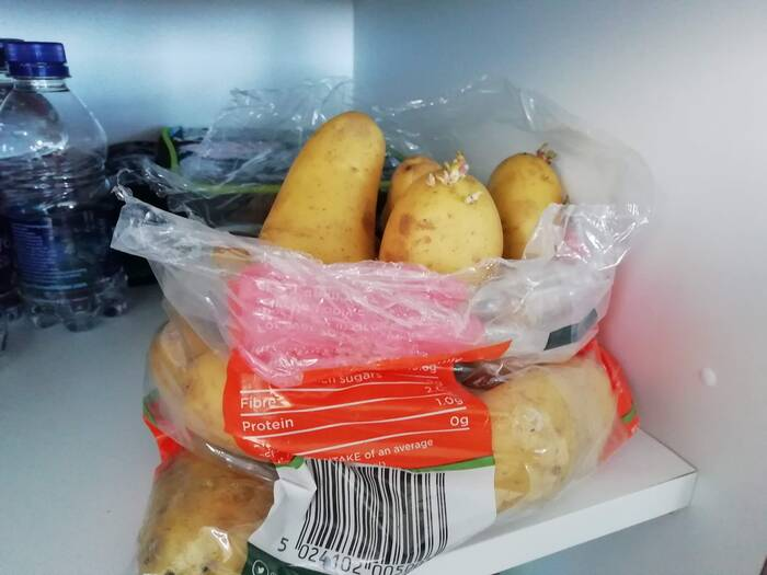 a plastic bag of potatoes in a cupboard starting to sprout because they are too warm