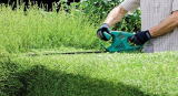 What Is The Best Cordless Hedge Trimmer