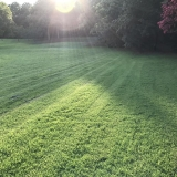 How to Dethatch a Lawn by Hand