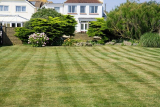 How To Make Stripes In Yard: transform your lawn
