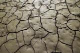 Best Tiller For Clay Soil: tiller requirements listed