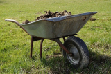 How To Add Manure To Your Vegetable Garden: which type, how much, and when?