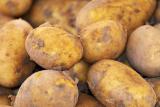 How Much Does A Medium Potato Weigh