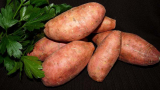 How Many Sweet Potatoes Grow From One Plant?
